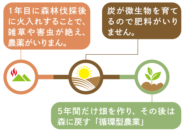 山の楽校 焼畑農法「あらきおこし」 図